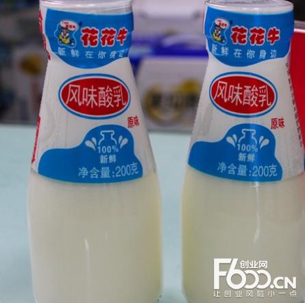 花花牛酸奶加盟