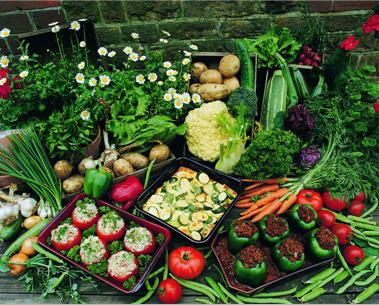 蔬菜简笔画图片大全大图 步骤
