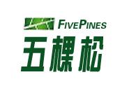 五棵松硅藻泥