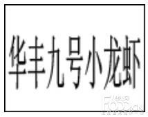华丰九号小龙虾