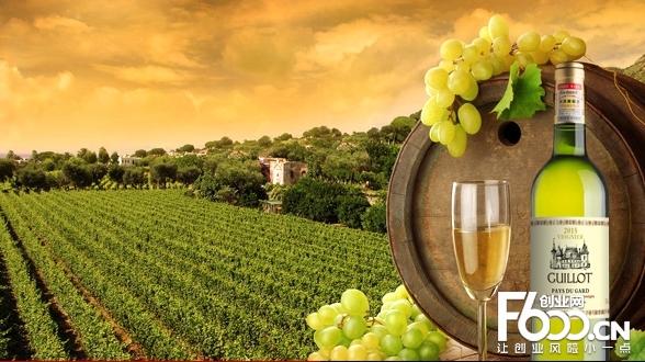 法国吉洛酒庄加盟前景如何?前景广阔的优质项目