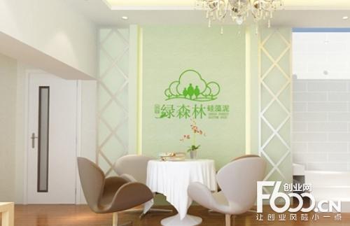 硅藻泥哪个品牌好 首选国内知名品牌绿森林硅藻泥