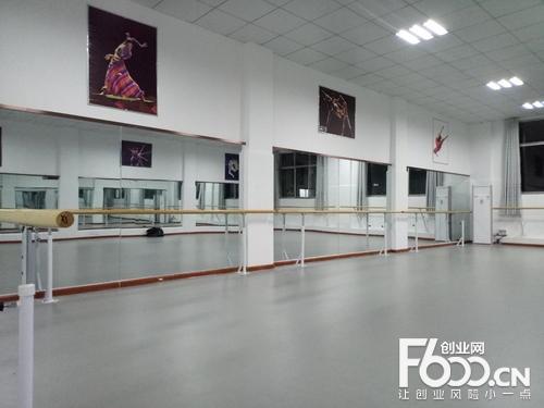 艺杨舞蹈培训加盟