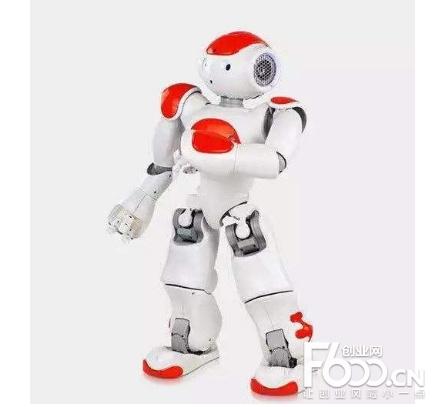 乐智机器人