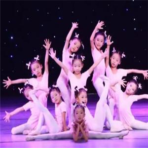 白孔雀舞蹈