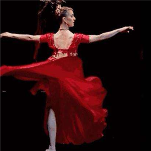 雅蕾舞蹈艺术培训