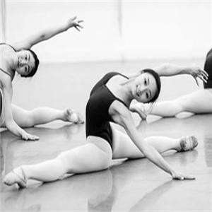 丹施秀舞蹈俱乐部