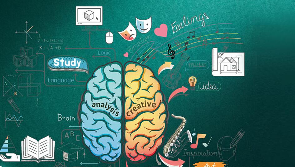 引爆右脑脑力训练思维导图加盟