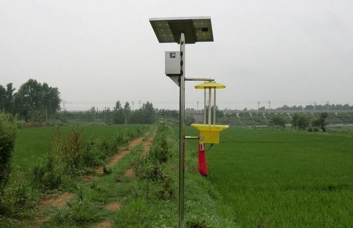 黄星太阳能发电加盟