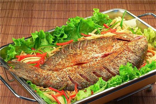 九歌炉鱼加盟条件