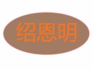 绍恩明黄焖鸡米饭