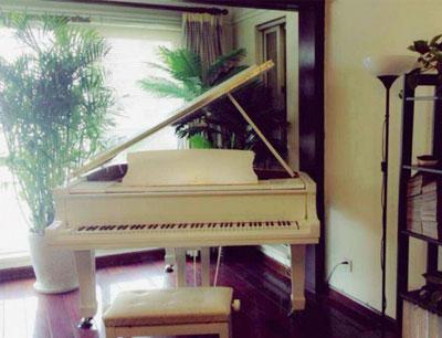 圣典成人钢琴俱乐部