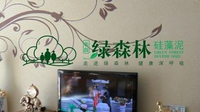 幼儿园以森林为主题的墙面布置