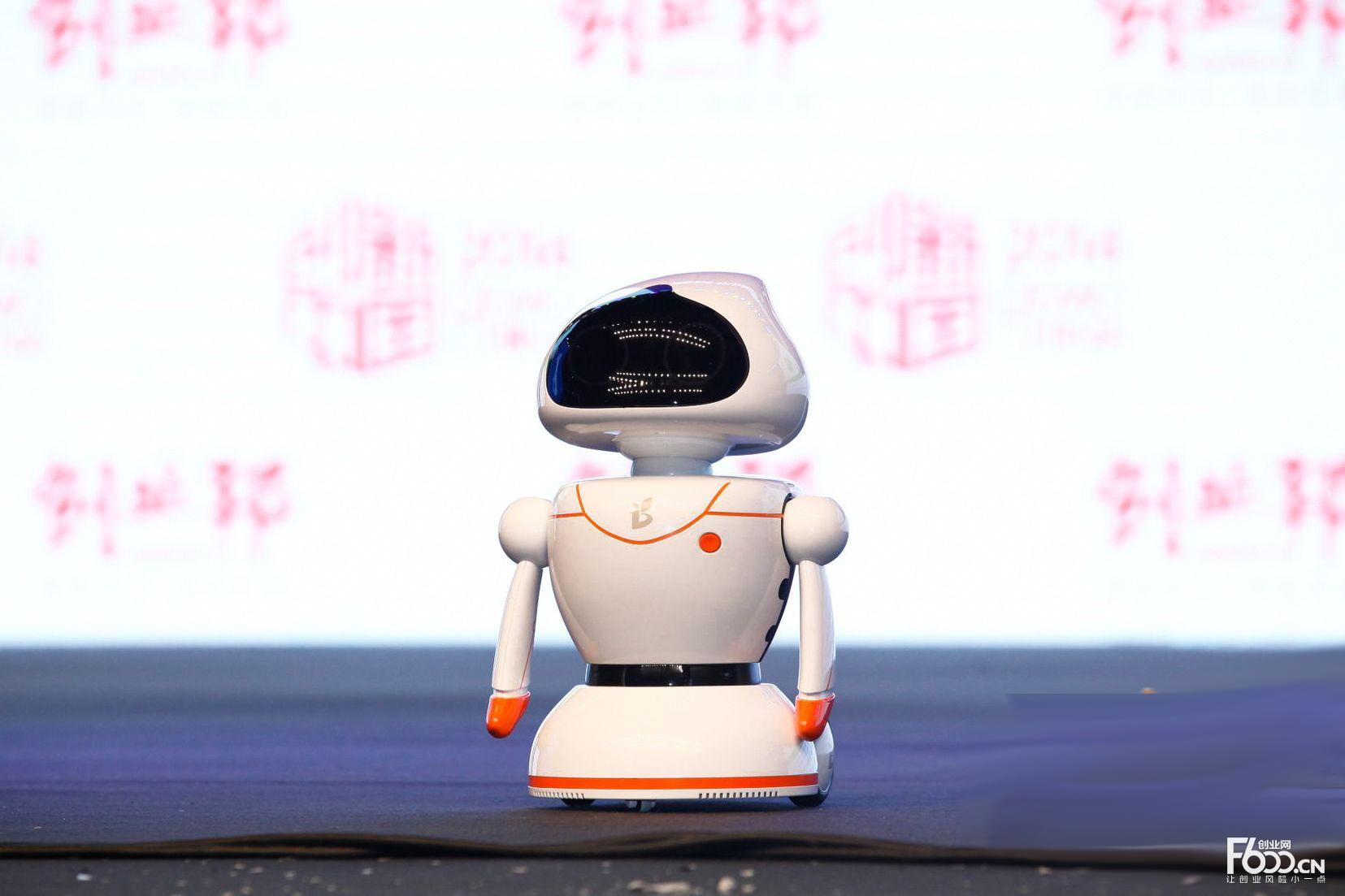小萝卜机器人