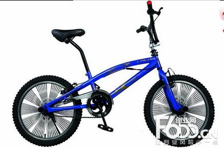 雷克斯自行车