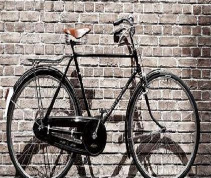 【凤凰自行车商家图片】凤凰自行车加盟招商